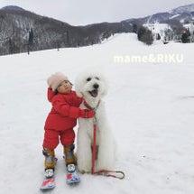まめちゃん初スキー♪