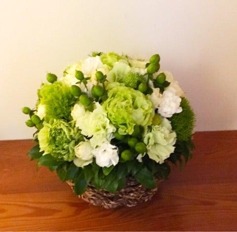 ニコライバーグマンの白い花