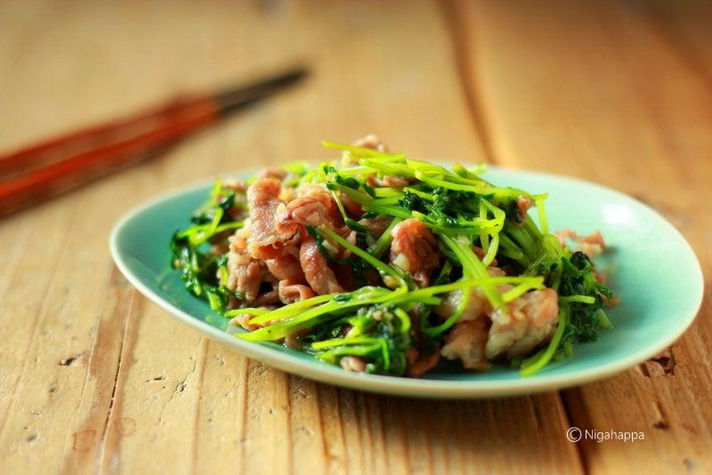 豚肉 とう みょう レシピ 人気