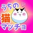 猫マッチョ第七話配信…