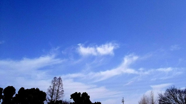 18-03-15-12-15-42-406_deco.jpg
