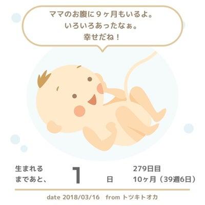39w6d 妊婦健診結果♡内診グリグリは効果絶大!?今後の方針の記事に添付されている画像