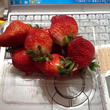 お値打ちイチゴ