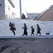 雪の壁に人影 & 猫…