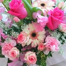 花のある生活  ヘナ…