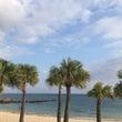 南の島と『雰囲気』