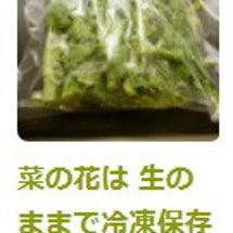 菜の花は冷凍保存 ♪
