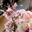 桜を使って春爛漫フラ…