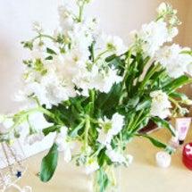お花を引き寄せました…