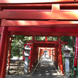 稲荷神社   初午祭