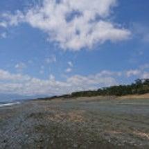 海はひろい
