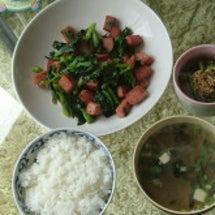 菜の花とスパムの炒め…