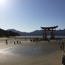宮島キャンプ。