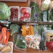 【食材まとめ買い(3月第3週目)&まとめ買いの後にやっておくといいこと♡】