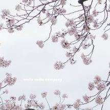♡ Spring h…