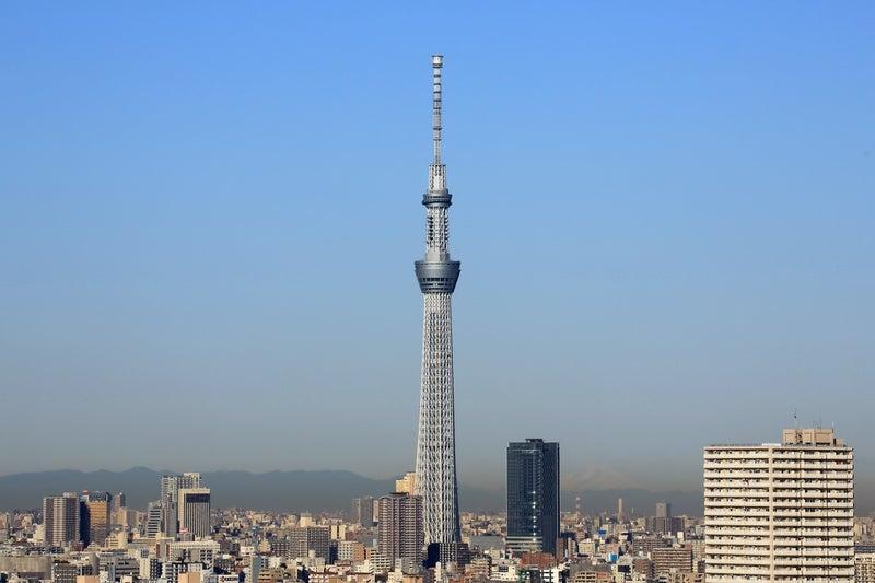 東京 スカイ ツリー の 高 さ は