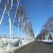 春の雪(帯広十勝 編…