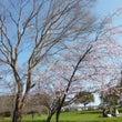 梅☆尼崎農業公園