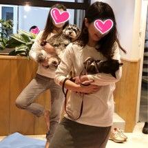 愛犬と繋がれた気がす…