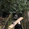 尾道最終日 お墓しまいの日❤️の画像