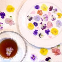 【春のお茶菓子に】簡…