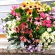 お花と、写真と、天使…