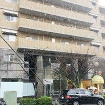 東京は大雪です!
