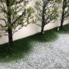 春分の日に…の画像