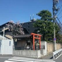 342 津島神社(東…