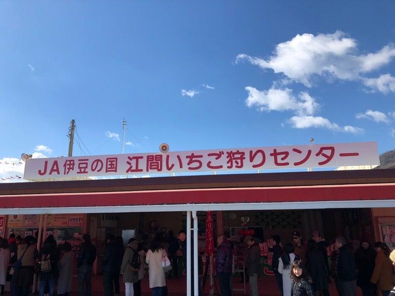 いちご 狩り センター 江間 「江間いちご狩りセンター」(伊豆の国市