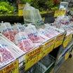 今現在お買い得の熱帯魚です~明日も販売しています