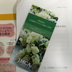 日本結婚カウンセリング協会の打ち合わせに行ってきました。