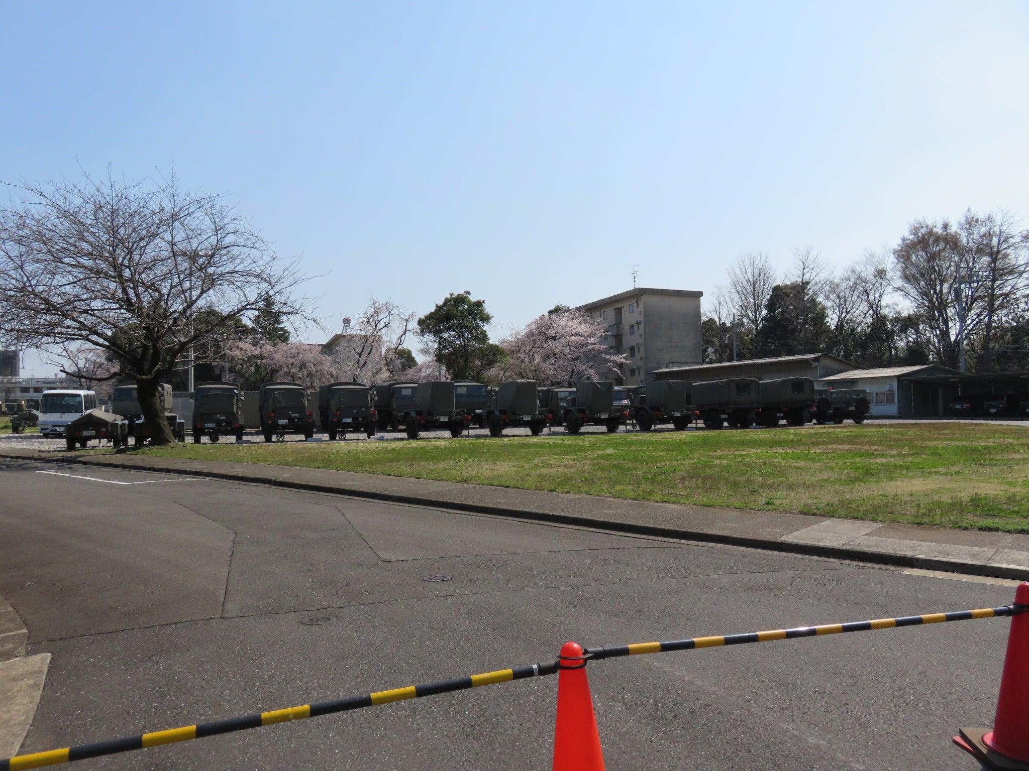 wistaria's blog三宿駐屯地「桜の通り抜け」