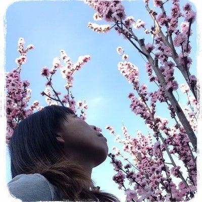 春休み〜LAVA〜の記事に添付されている画像