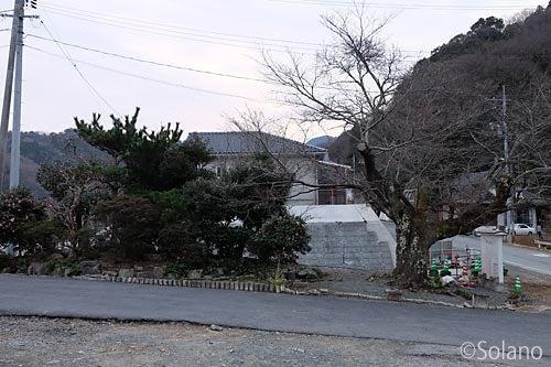 川平駅、桜の木と池庭の植栽