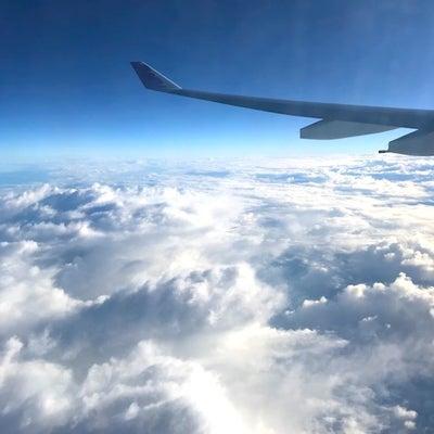 ハワイアン航空 関空ーホノルル便@機内食の記事に添付されている画像