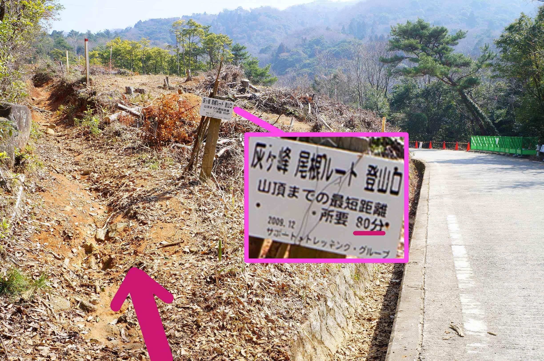 ナユミマ 食べ&歩き日記焼山八畳岩~灰ヶ峰① 八畳岩をゆく