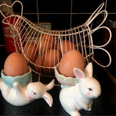 生まれたてのイギリス卵の記事に添付されている画像