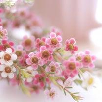 まさかの花束 ♡の記事に添付されている画像