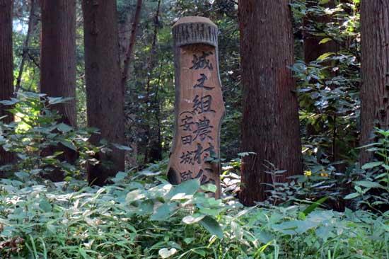 【写3】安田城