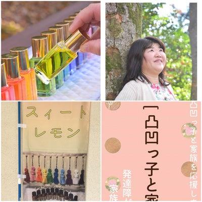 【Amebaチャンス】午後の紅茶を無料でもらおう!の記事に添付されている画像