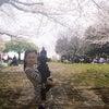 春休み中の画像