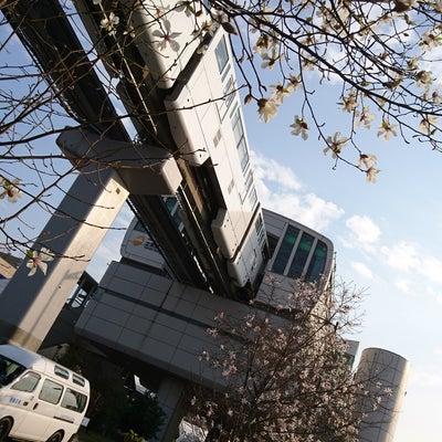 アルバルク東京のホーム初観戦①の記事に添付されている画像