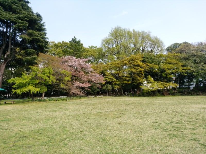 岩崎邸庭園_03.jpg