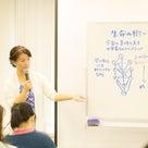 10月10〜13日東京開催!生命の樹の講座のご案内♪の記事より