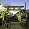 向日神社ってこんなに素敵だったんだ!?の画像