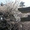 【4月のサロン空き情報】の画像