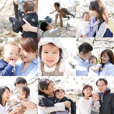 【3月30日スタート!!】桜サクヨフォト撮影会♡今年も開催します!の記事に添付されている画像