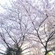 四月ですね!