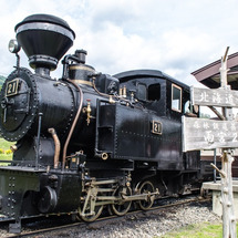 森林鉄道蒸気機関車 …